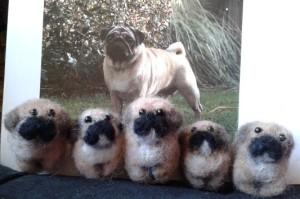 pug puppies 1
