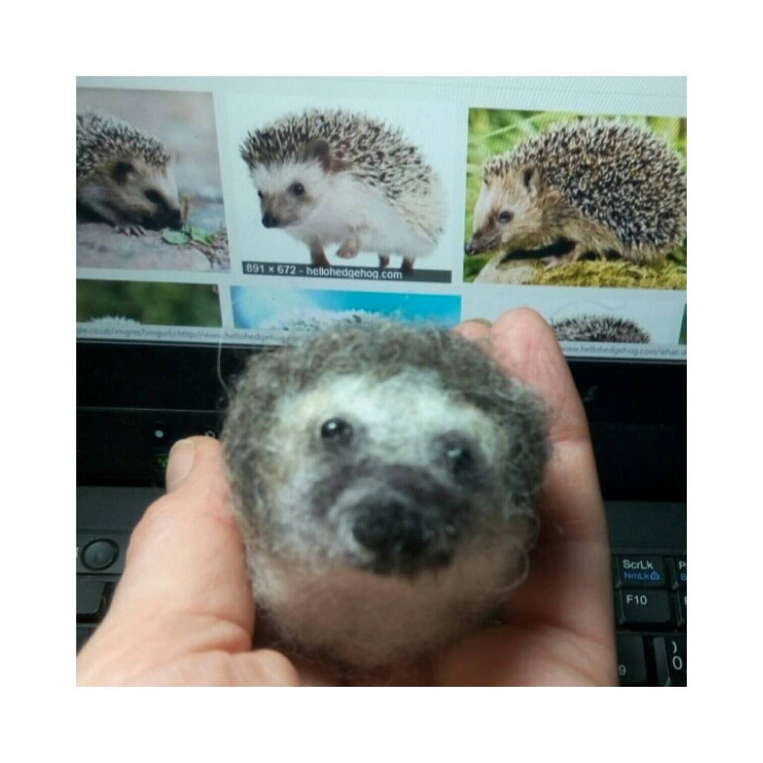 """Thank you so much for replacing our lost hedgehog with this one, he's perfect!"" Rebecca"