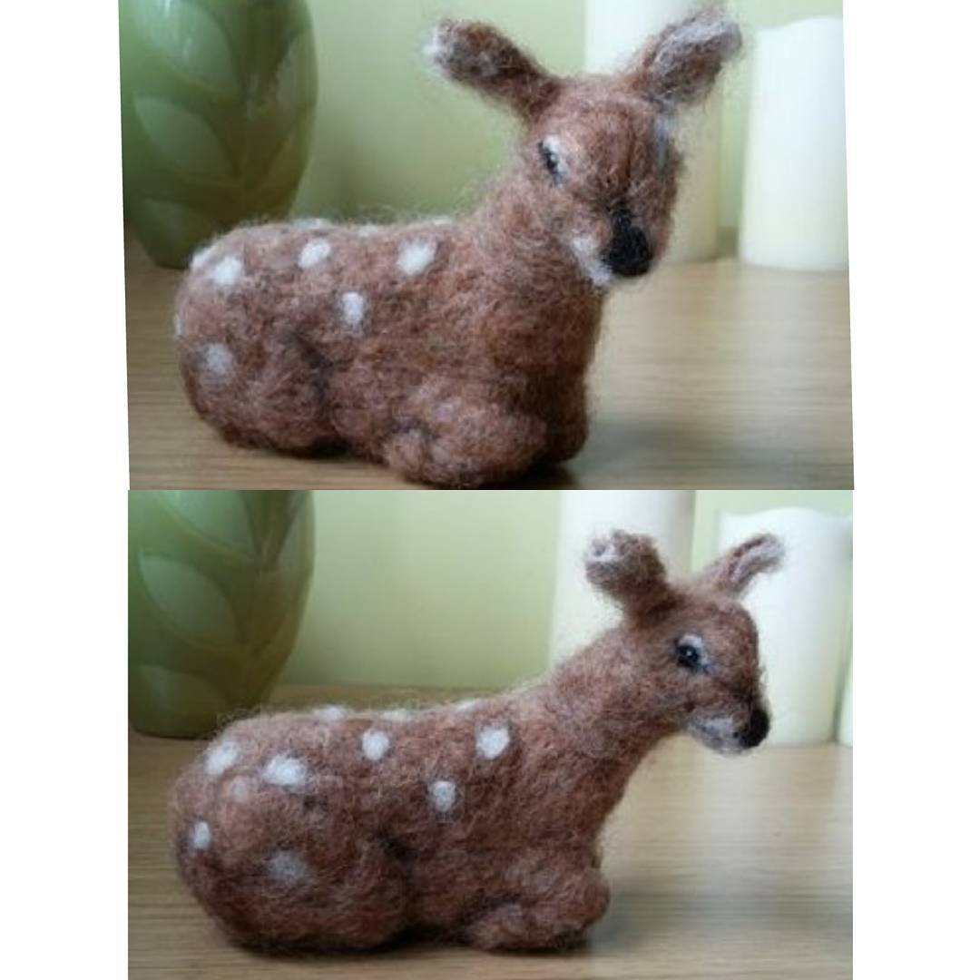 "Seb: ""He really is very cute. My friend and I have a running joke about a deer that lives with the sheep opposite Ashdown House (really) so I know she will be thrilled with him for her birthday next month! Thanks so much"" Gill"