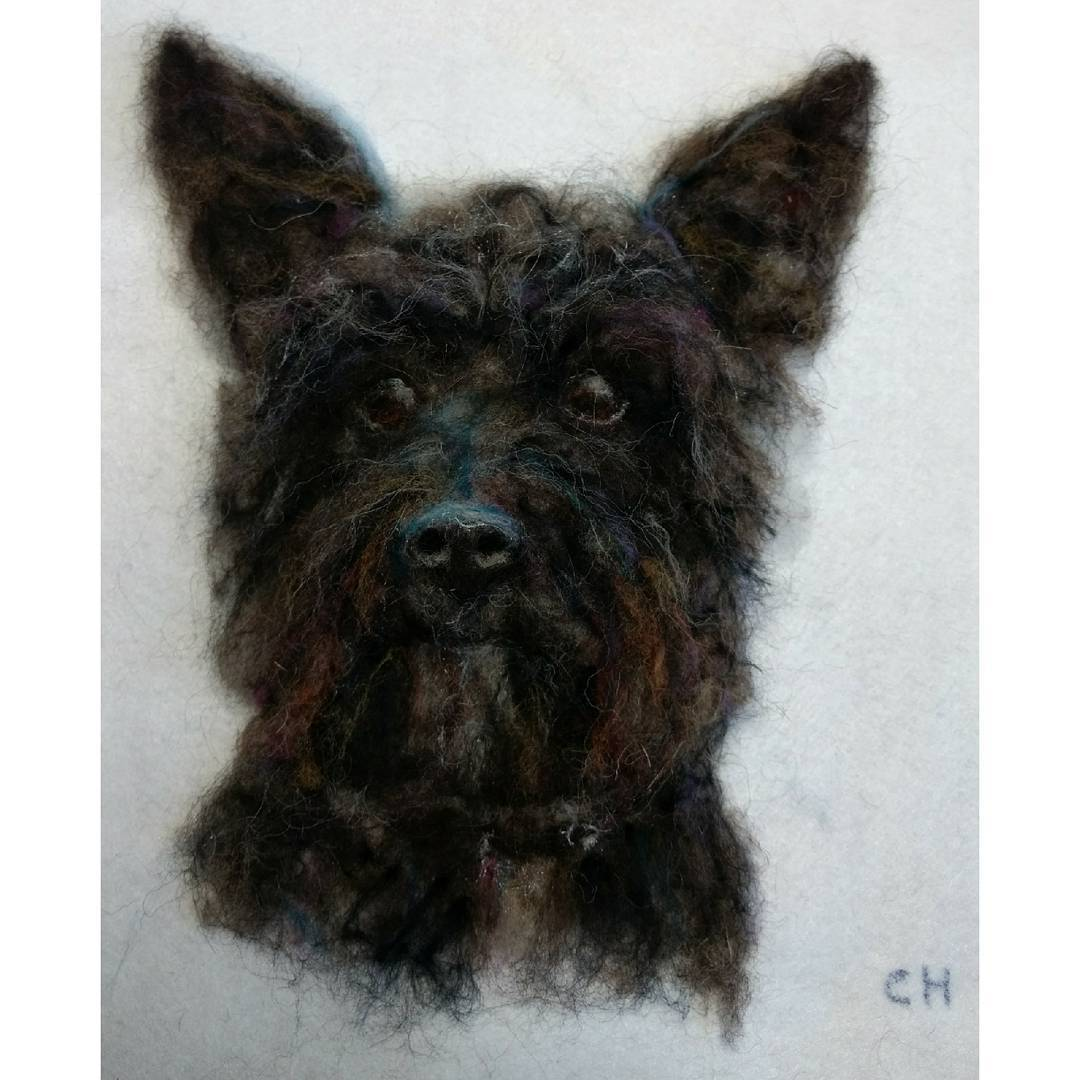 "Maisy: ""Just to let you know my wife Clare was thrilled and delighted with the portrait you produced of Maisy, and I am so grateful too"". Rob  #3d #dog #scotties #highlandterrier #terrier #needlefelt"