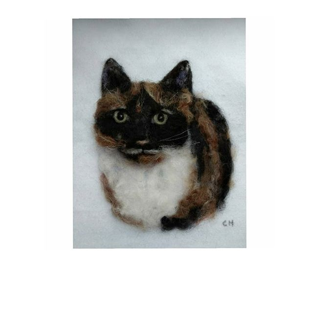 "Nellie: ""I think you have done an amazing job & you have got her eyes so right. It is definitely our Nellie"" Joy and Mervyn #cats #cat #needlefelting #kitten #tortoiseshellcat"