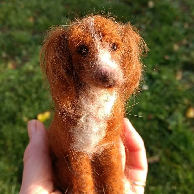 "Pumpkin: "" You are amazing. I love this…Perfect X I cannot believe how much this looks like my Pumpkin.X thank you"" Helen #dog #needlefeltdog"